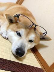 みずきのメガネ