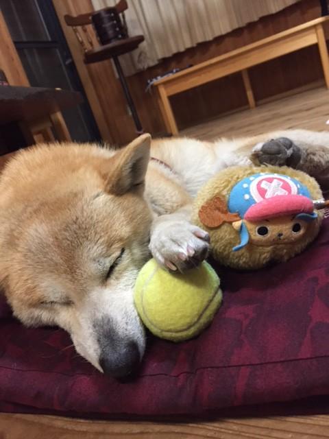 みづき居眠り